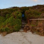 Walkway from the beach to our campsite, Augusta