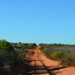 The road out through the Francois Peron NP
