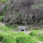 A nesting box for the little penguins of Phillip Island (fox proof!)