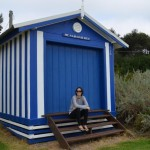 Tara picked her beach hut