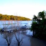 Adelaide River Crocs, NT