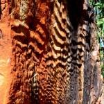 Emma Gorge rock formation