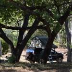 Fitzroy River camp site