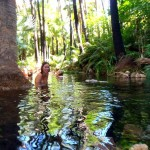 Zebedee Springs, El Questro (~30 degree water from the ground)