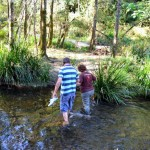 Charlie Moreland camping area - crossing Little Yabba Creek