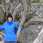 Tee among the snow gums, near Charlottes Pass