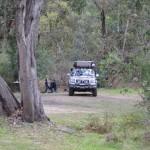Our riverside camp - Tom Groggin