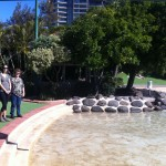 Settlement cove - Redcliffe Lagoon