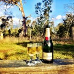 Celebratory bubbles in the bush!