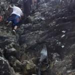 Climbing Mt Tibrogargan