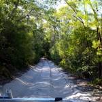 Fraser Island - inner sand tracks