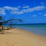 Sandy cape camp site - Fraser Island
