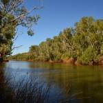 Deep Reach Pool, Fortescue River, Millstream NP,  The Pilbara