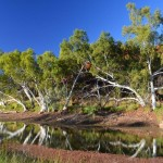 Black Hill Watering Hole,  The Pilbara