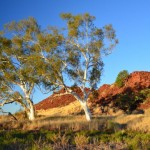 Black Hill,  The Pilbara