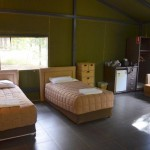 Zoofari tent